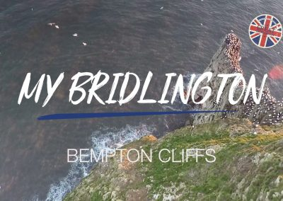 My Bridlington – Bempton Cliffs